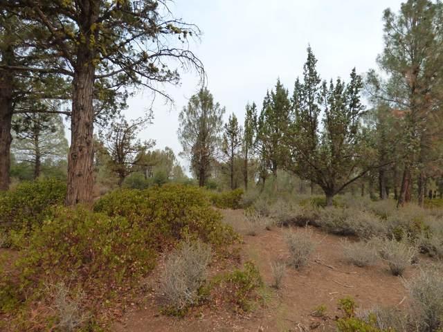 000 Cassel Fall River Rd., Fall River Mills, CA 96028 (#21-3711) :: Waterman Real Estate