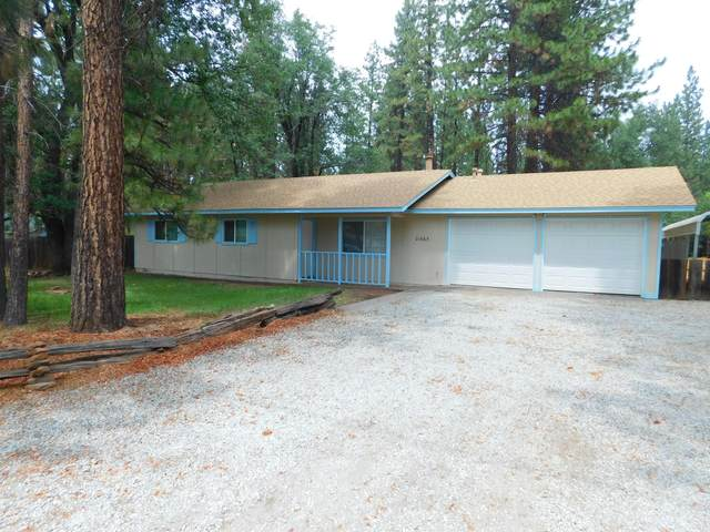21665 St Helena St, Burney, CA 96013 (#21-3712) :: Real Living Real Estate Professionals, Inc.