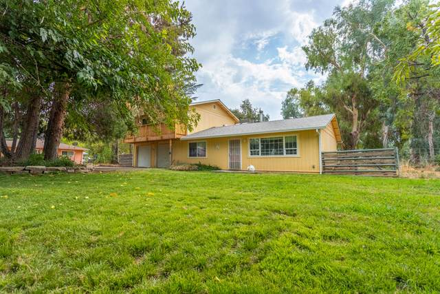22499 Venzke Rd, Cottonwood, CA 96022 (#21-4553) :: Waterman Real Estate