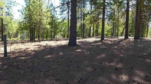 20+- Acres Backbone Road, Bella Vista, CA 96008 (#21-4584) :: Wise House Realty