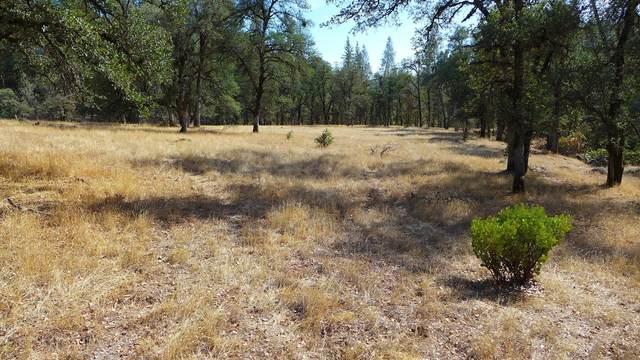 158+-Acres Backbone Road, Bella Vista, CA 96008 (#21-4586) :: Wise House Realty