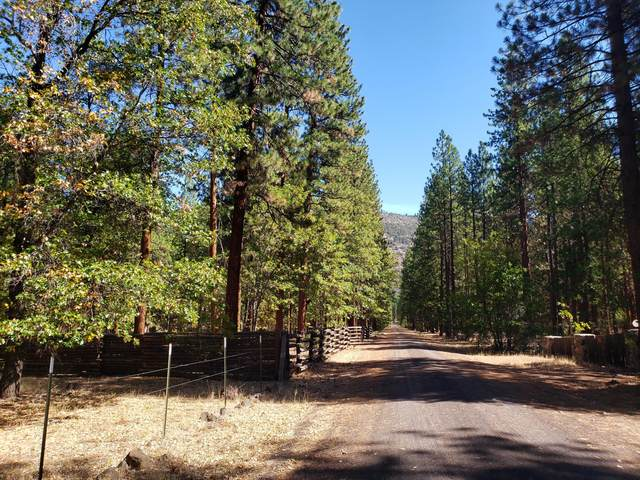 44942 Pine Shadows Rd., McArthur, CA 96056 (#21-4616) :: Waterman Real Estate