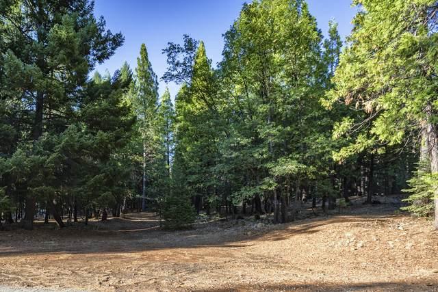 Lot 18 Emigrant Trail, Shingletown, CA 96088 (#21-4699) :: Waterman Real Estate