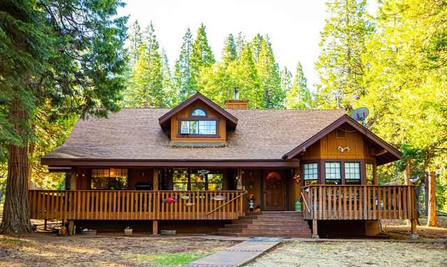 30845 Dandelion Ln, Shingletown, CA 96088 (#21-4729) :: Waterman Real Estate