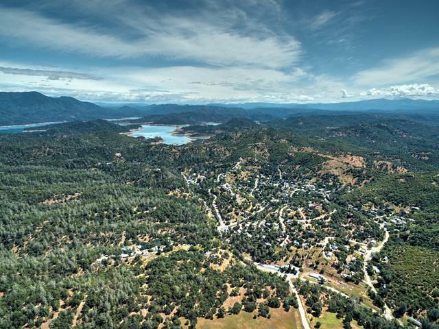 000 Bear Mountain Rd, Redding, CA 96003 (#21-484) :: Wise House Realty