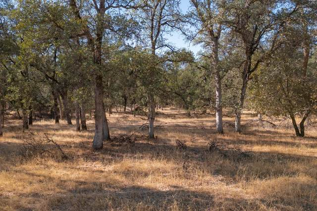 West Ho Trail- 207-030-007, Cottonwood, CA 96022 (#21-4907) :: Wise House Realty