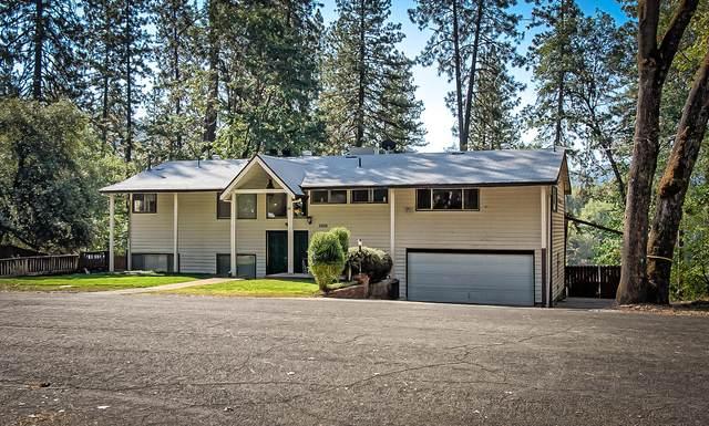 20637 Oak Street, Lakehead, CA 96051 (#21-4955) :: Waterman Real Estate