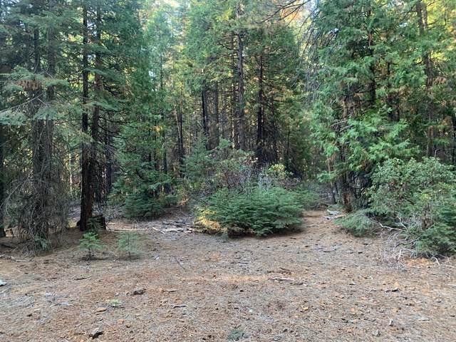 33705 Aurora View, Shingletown, CA 96088 (#21-4965) :: Waterman Real Estate