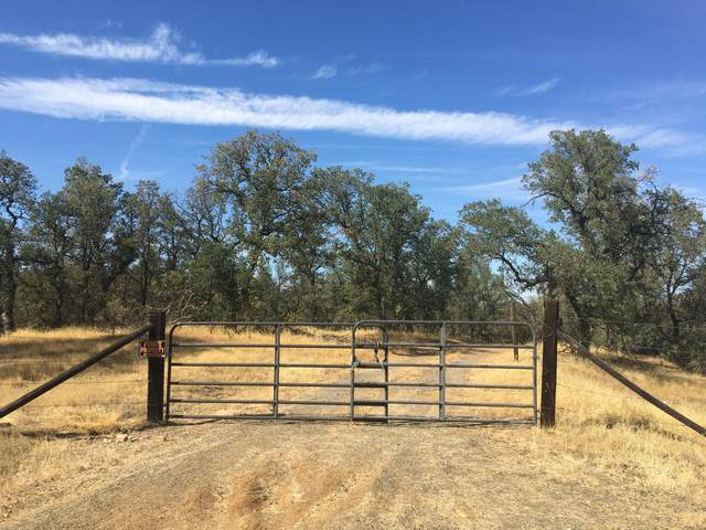Lot #3 Quail Ridge Rd., Cottonwood, CA 96022 (#21-5016) :: Coldwell Banker C&C Properties