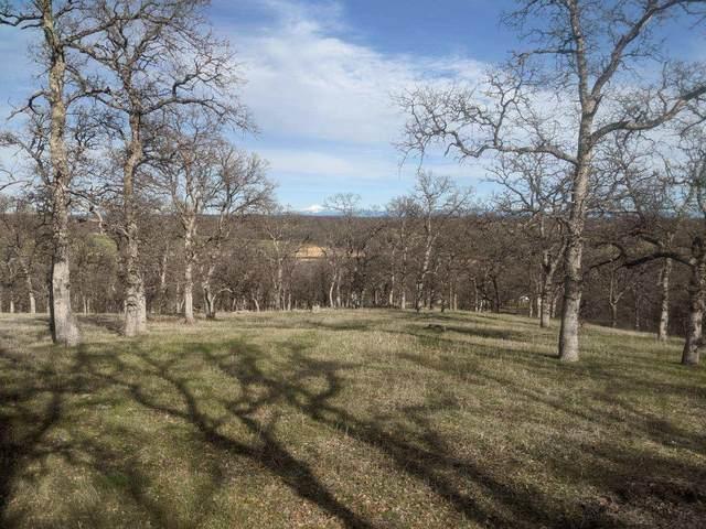 000 Mccoy, Red Bluff, CA 96080 (#21-706) :: Waterman Real Estate