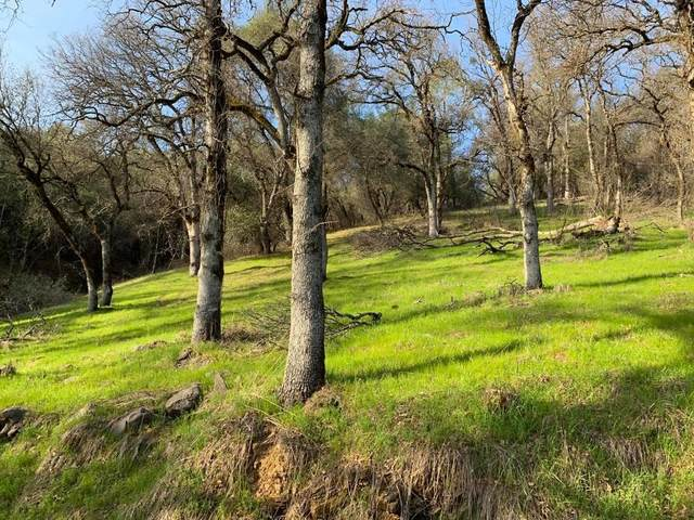 0 Bear Mountain Rd, Redding, CA 96003 (#21-723) :: Wise House Realty