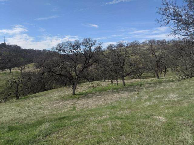 22535 Rio Robles Dr, Red Bluff, CA 96080 (#21-781) :: Waterman Real Estate