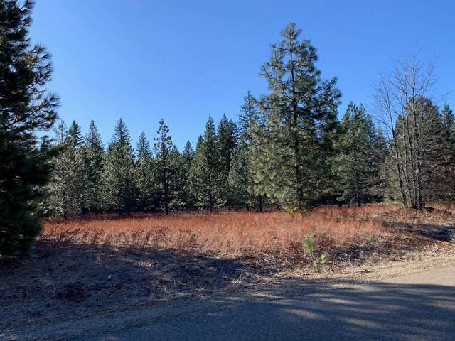 Lot 34 Princess Pine, Shingletown, CA 96088 (#21-870) :: Real Living Real Estate Professionals, Inc.