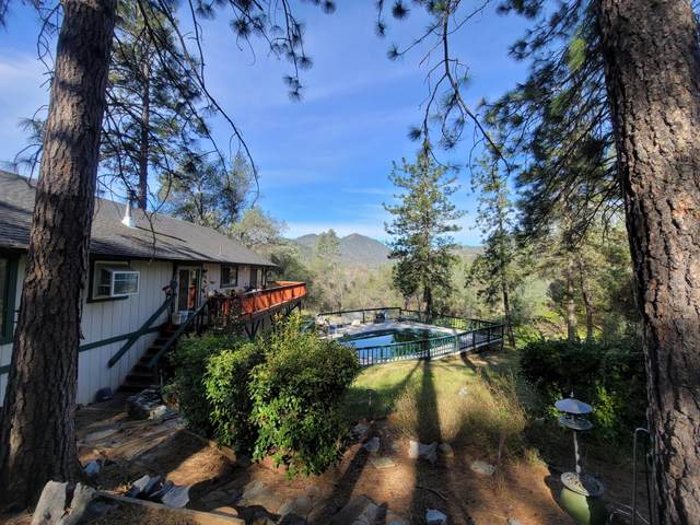 19795 Sweetwater Trl, Redding, CA 96003 (#21-909) :: Real Living Real Estate Professionals, Inc.