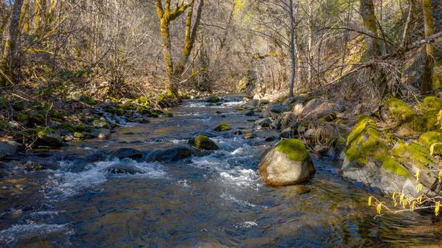 Dog Creek Rd, 019-400-063, Lakehead, CA 96051 (#21-998) :: Waterman Real Estate