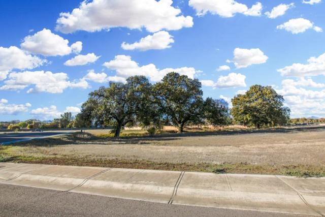 Lot 33 Palo Cedro Oaks, Palo Cedro, CA 96073 (#17-5916) :: 530 Realty Group