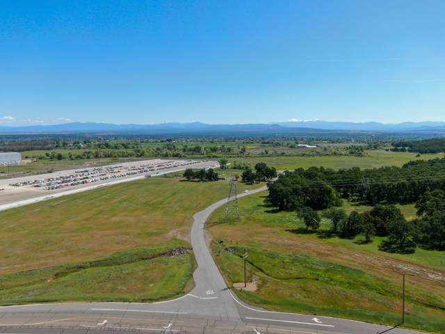 Paul Bunyan Ct, Anderson, CA 96007 (#18-1151) :: Real Living Real Estate Professionals, Inc.