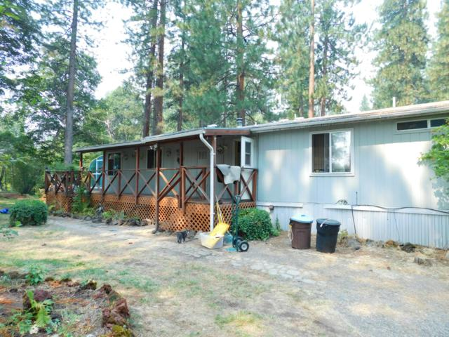 42491 Wilcox Rd, Hat Creek, CA 96040 (#18-4592) :: 530 Realty Group
