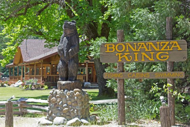 475 Coffee Creek Rd, Trinity Center, CA 96091 (#18-5867) :: The Doug Juenke Home Selling Team