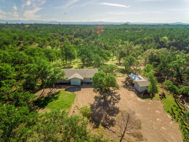 8976 Bass Pond Rd, Millville, CA 96062 (#19-2227) :: 530 Realty Group