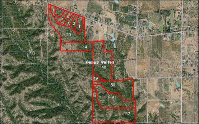 Palm Ave, Happy Valley, CA 96007 (#19-3672) :: Josh Barker Real Estate Advisors