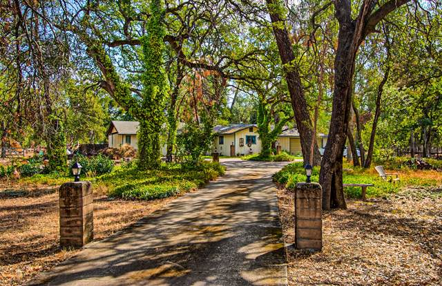 3123 Ponder Way, Cottonwood, CA 96022 (#19-5361) :: Wise House Realty