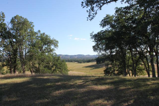 Somerset Dr, Bella Vista, CA 96008 (#19-783) :: Josh Barker Real Estate Advisors