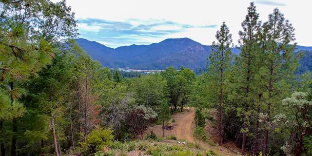 144 acres Gilman Road, Lakehead, CA 96051 (#20-101) :: Waterman Real Estate