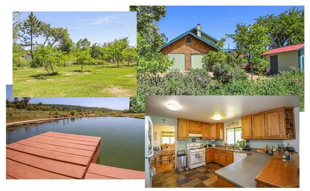 32135 Rock Creek Rd, Manton, CA 96059 (#21-2171) :: Coldwell Banker C&C Properties