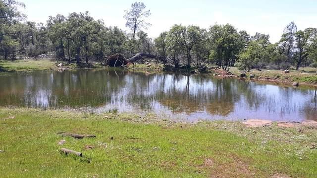 Kirkman Way, Millville, CA 96062 (#21-2500) :: Waterman Real Estate