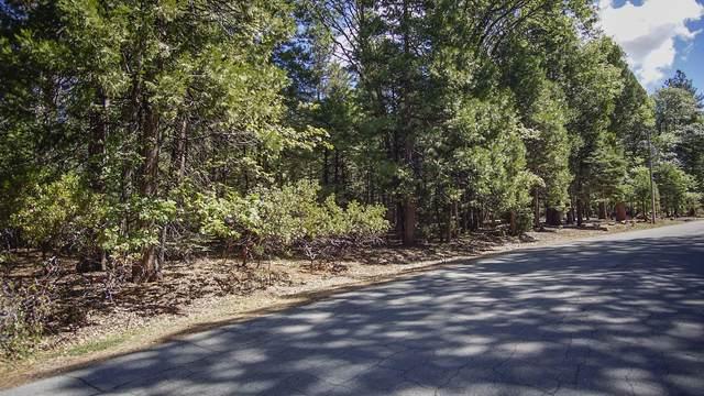 #10 Woodridge, Shingletown, CA 96088 (#21-2514) :: Waterman Real Estate