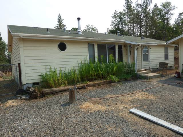 43100 Chaffey Ct, Fall River Mills, CA 96028 (#21-3690) :: Real Living Real Estate Professionals, Inc.