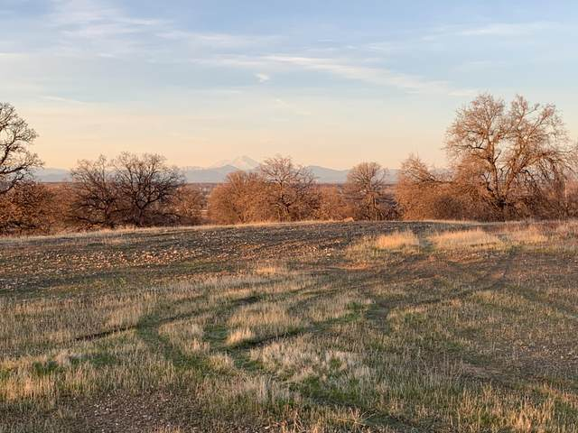 Lot 75 River Downs, Cottonwood, CA 96022 (#21-452) :: Wise House Realty