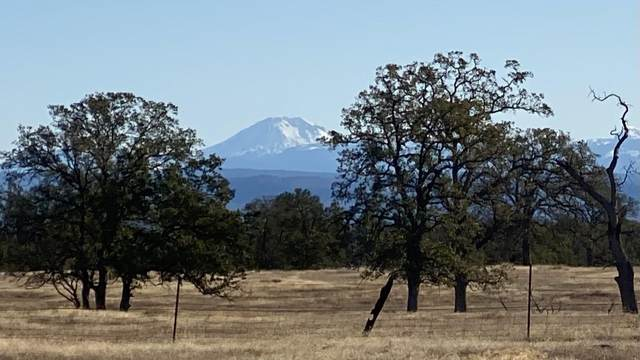 012 & 014 French Creek Rd, Palo Cedro, CA 96073 (#21-846) :: Real Living Real Estate Professionals, Inc.