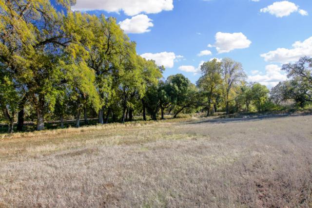 Lot 14 Palo Cedro Oaks, Palo Cedro, CA 96073 (#17-5929) :: 530 Realty Group