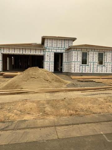 4627 Pleasant Hills Dr, Anderson, CA 96007 (#21-2192) :: Real Living Real Estate Professionals, Inc.