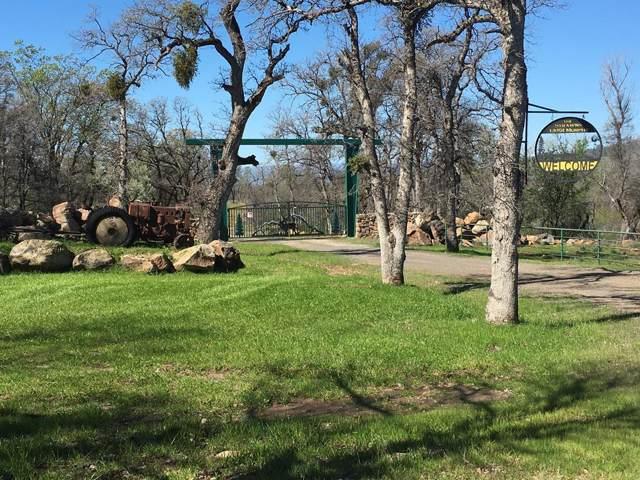 13951 Murphy Ln, Oak Run, CA 96069 (#16-1451) :: Wise House Realty