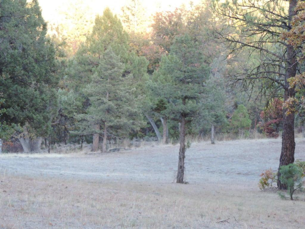 Lot 60 Shoshoni Loop - Photo 1