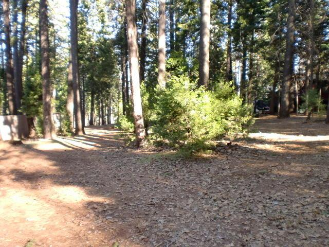 #52 Shasta Forest, Shingletown, CA 96088 (#17-6151) :: 530 Realty Group