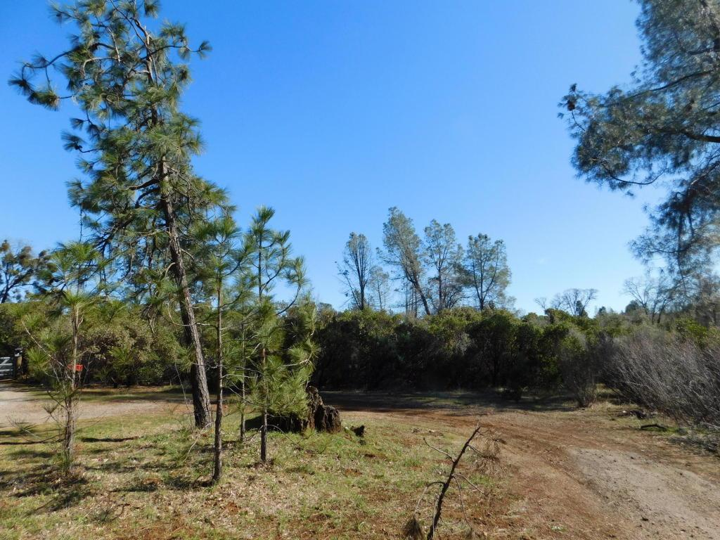 Lot #13 Crater Dr - Photo 1