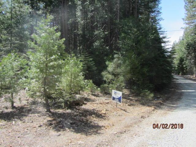 lot 5 Battle Creek Dr, Shingletown, CA 96088 (#18-1873) :: 530 Realty Group