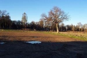 7153 Old 44 Dr, Palo Cedro, CA 96073 (#19-2759) :: The Doug Juenke Home Selling Team