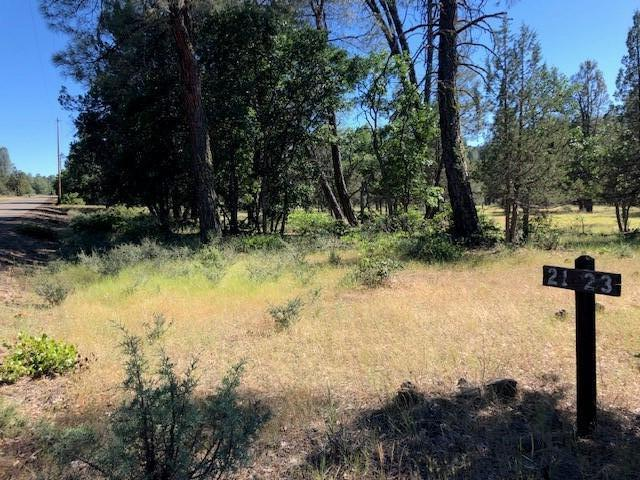 Lot 21 Shoshoni Loop, Fall River Mills, CA 96028 (#19-3441) :: The Doug Juenke Home Selling Team