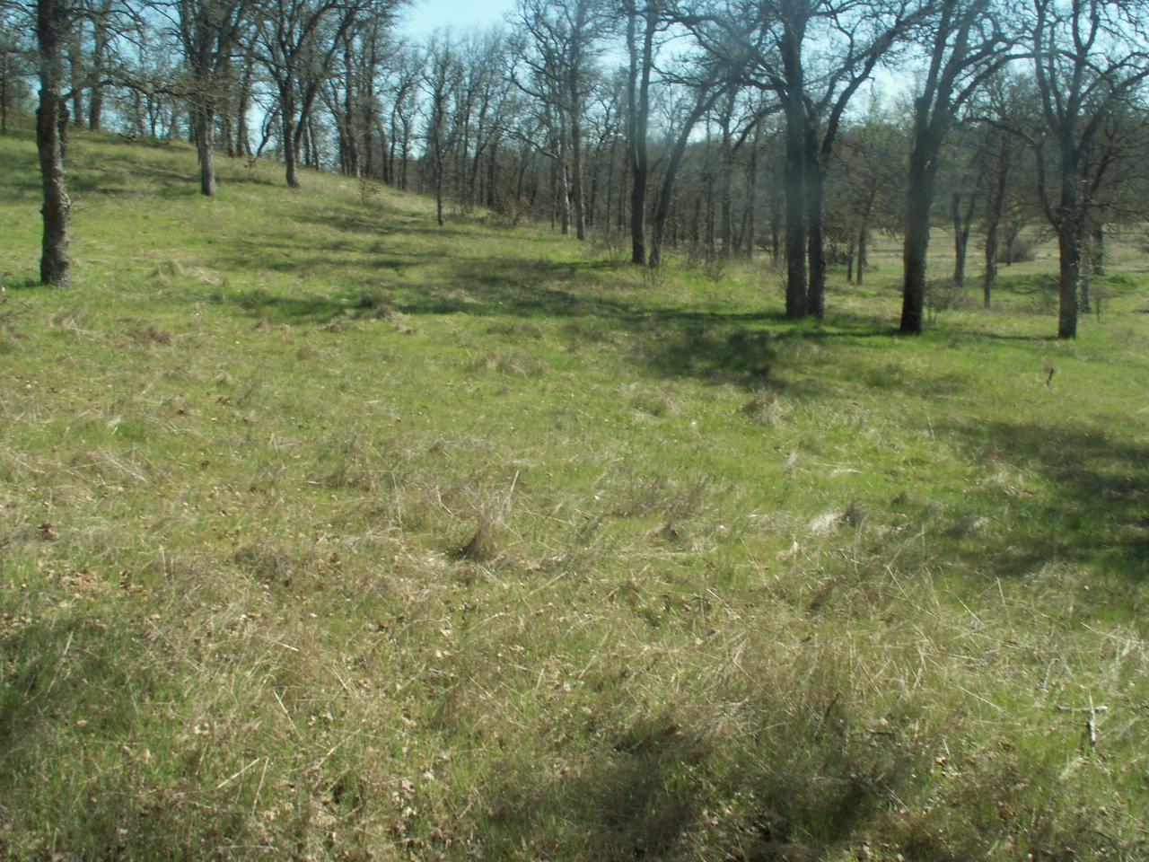 18763 Saddleback Ridge Loop - Photo 1