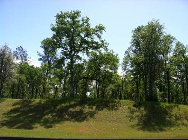 Lot 34 Alicia Parkway, Redding, CA 96003 (#20-2195) :: Real Living Real Estate Professionals, Inc.