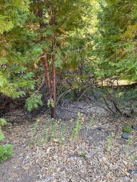 23 Whispering Creek Ct - Photo 1