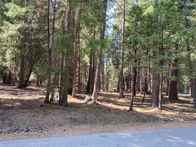 Douglas Fir Ct., Shingletown, CA 96088 (#20-4435) :: Wise House Realty