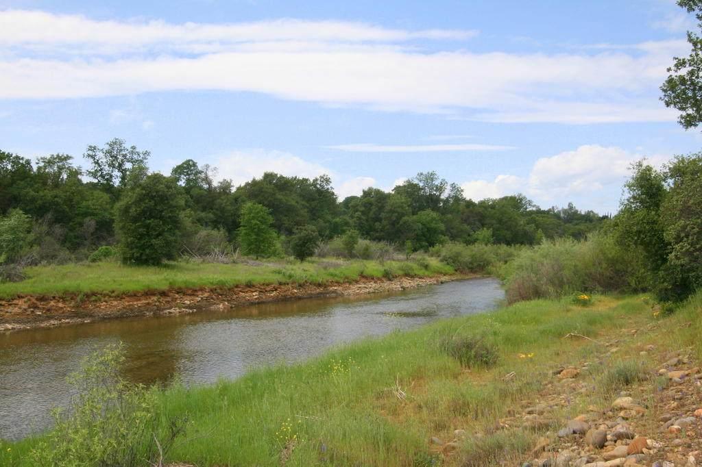 42 Acres Oak Bottom Road - Photo 1