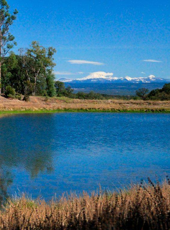 Charolais, Palo Cedro, CA 96073 (#20-862) :: Waterman Real Estate