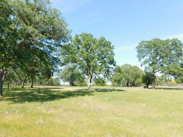 Lazy Lane Lot 12, Red Bluff, CA 96080 (#21-2003) :: Waterman Real Estate